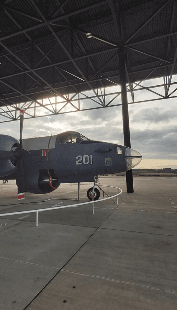 Gevechtsvliegtuigen bij het Nationaal Militair Museum in Soesterberg