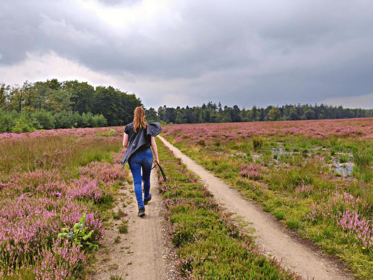 Mooiste heidewandeling - Kelsey wandelt in de heide